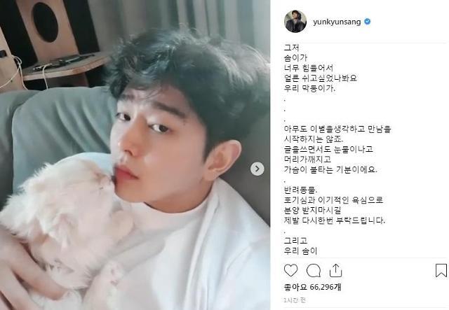"""[#SNS★] 애묘인 윤균상 """"막둥이 솜이 떠나…머리가 깨지고 가슴이 불타는 기분"""""""