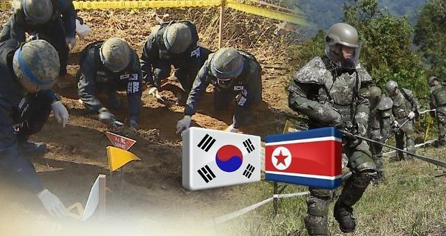 韩军今日开始挖掘战争遗骸 预计投入100余人