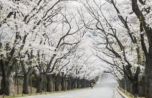 Du lịch Hàn Quốc nỗ lực thu hút du khách nước ngoài thông qua các mô hình đổi mới