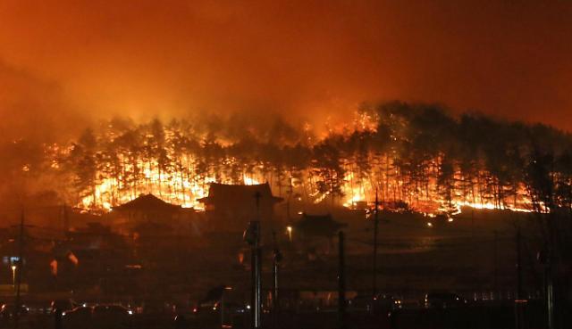 韩江原道发生山林大火 东海岸一带受灾严重