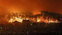 .韩江原道发生山林大火 东海岸一带受灾严重.