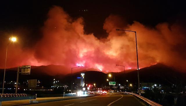 江原道の山火事