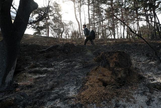 [아주 쉬운 뉴스 Q&A] 특별재난지역으로 선포된 강원 산불 현장, 무엇이 달라지나요?