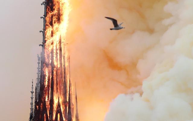 [광화문비디오방] 끝끝내 무너져 내리는 프랑스의 상징, 노트르담 대성당의 첨탑