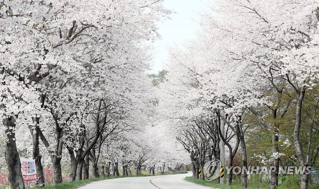 오늘 곳곳 비 소식에 미세먼지 '보통'…내일은 '맑음'