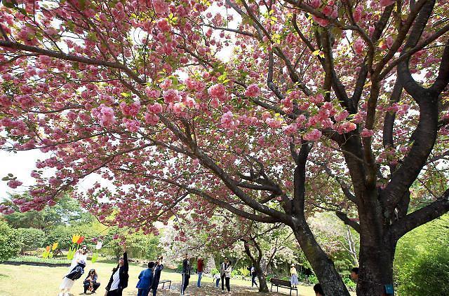 [내일날씨] 초여름 수준의 월요일 시작…낮 최고 28도