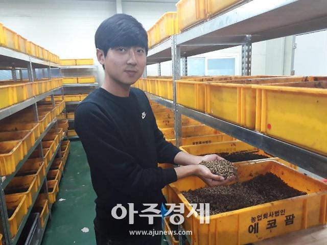 경북도, 도내 곤충사육농가 최근 5년간 6배 성장...곤충산업 확산