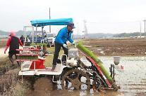 農家所得4000万ウォン時代...昨年比10%増え