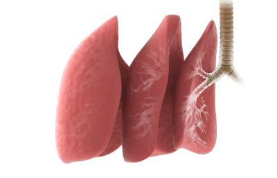 삼성서울병원 연구팀, 폐암 전이 위험도 높은 위치 발견
