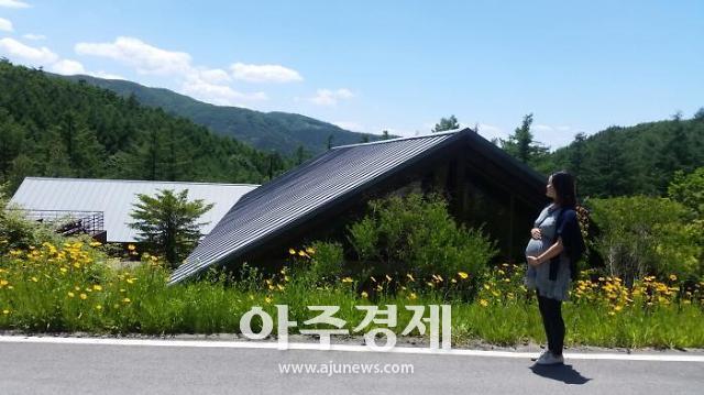 """산림복지진흥원 """"숲에서 태교하세요"""""""