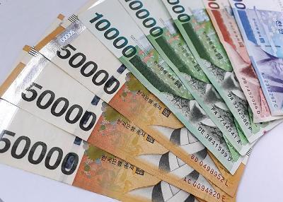 1000원→1원 리디노미네이션 물가인상 반대 53% - 경제규모 맞게 찬성 32%
