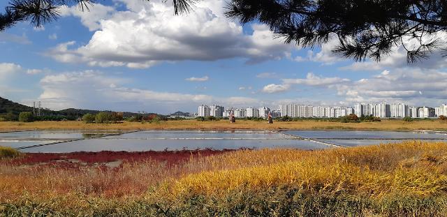 인천시, 소래습지생태공원 자연마당조성 착수