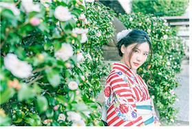 [강효백의 新경세유표 12-9] 무궁화는 꽃나무로 위장한 전범기인가?