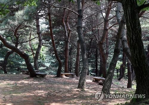 산림청, 국가기술자격증 대여 일제 단속