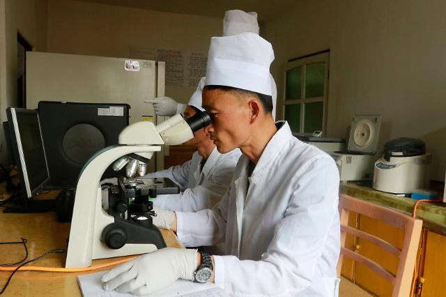 朝鲜首次对内公布非洲猪瘟疫情流入境内