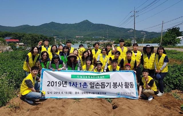 인천도시공사 신입사원 및 시민평가단 함께 농가 일손 도와