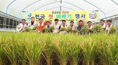 S. Korea offers to send 50,000 tons of rice to N. Korea through U.N. agency