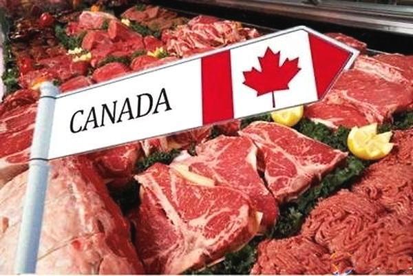 중국, 캐나다산 육류 수입 전면 중단… '사드식' 보복 계속