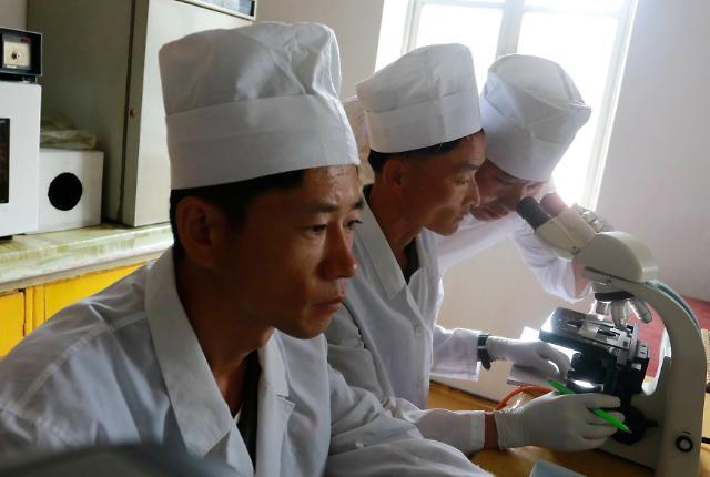 韩政府:朝鲜仍未答复共抗猪瘟提议