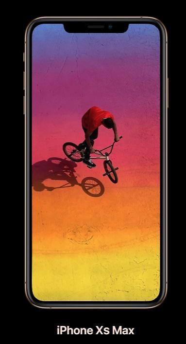진화 핸드폰은 아이폰 맥스, 가격만 100만원 후반대? 헉