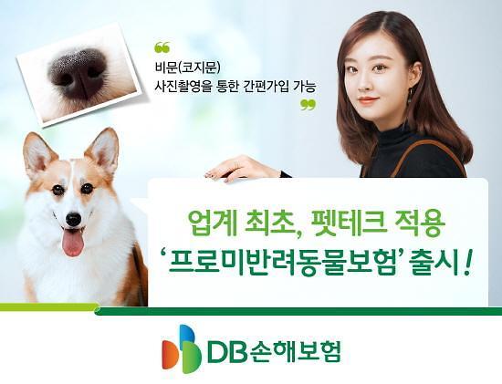 DB손보, 강아지 코지문으로 가입하는 반려동물보험 출시