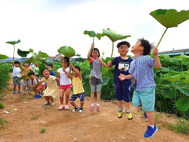 [포토] 김해 명소로 떠오른 칠산서부동 친환경 연밭