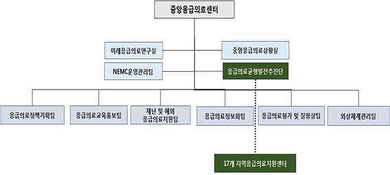 국립중앙의료원 중앙응급의료센터 조직개편 단행