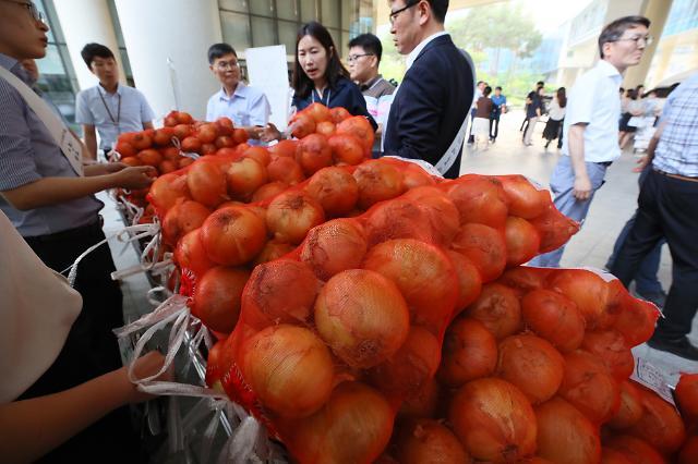 한농대, 졸업생이 생산한 양파 판매 나선다