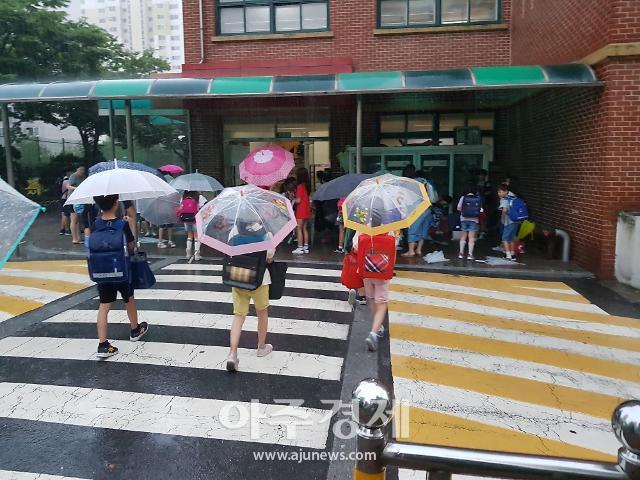 파주시, 초등학교 신입생 투명우산 지원
