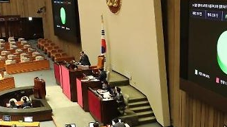 국회 본회의, 일본 수출규제 철회 촉구 결의안·추경예산안 등 176건 처리