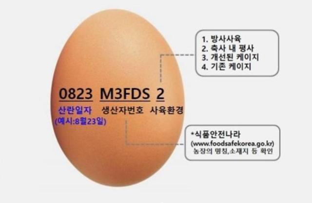 대구시, 달걀 껍데기 산란일자 표시제 전면 시행