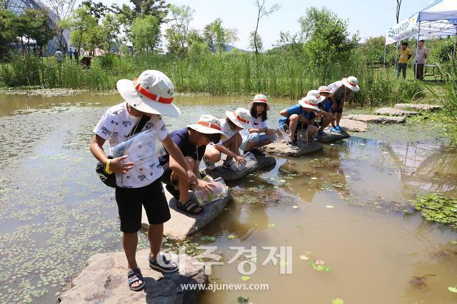 국립생태원 멸종위기종복원센터, 멸종위기 Ⅱ급 금개구리 증식 성공