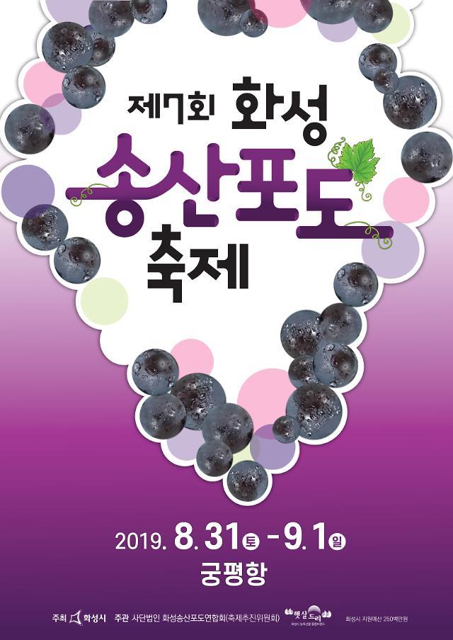 화성시, 궁평항서 제7회 화성송산 포도축제 개최