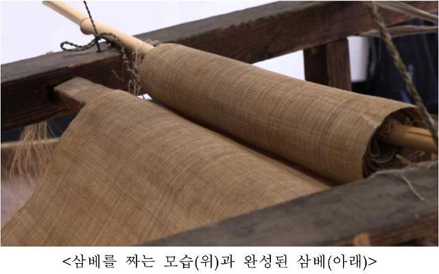 삼베짜기 국가무형문화재 신규종목 지정 예정
