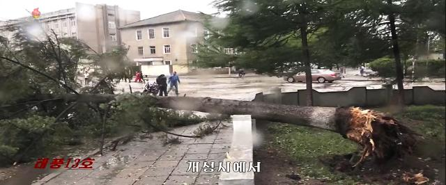 [슬라이드 화보] 북한도 태풍 링링 피해 속출...조선중앙TV 이례적 신속 보도