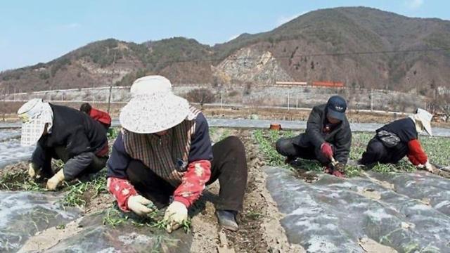 """韩国""""雇佣许可制""""施行15年 合法外籍劳工达27万人"""