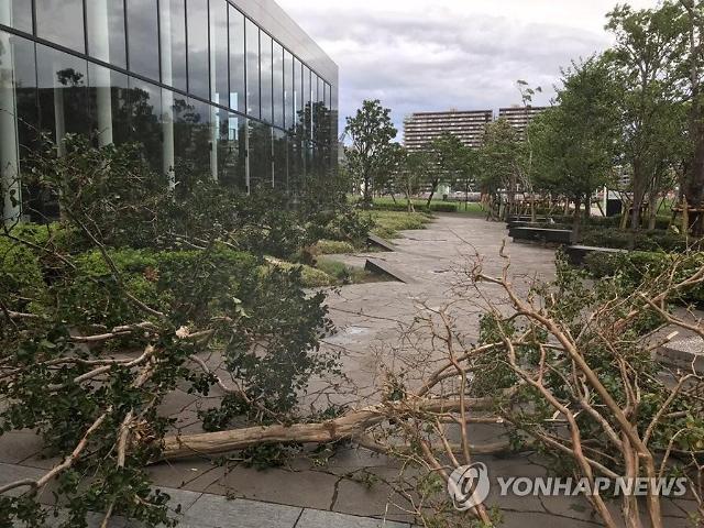 초속 60m 태풍 파사이 日도쿄 강타…30만 가구 정전