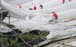 """.台风""""玲玲""""导致韩国9400余处设施受损."""