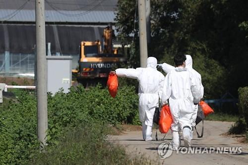 파주·연천·포천·동두천·김포·철원, 중점관리지역 지정