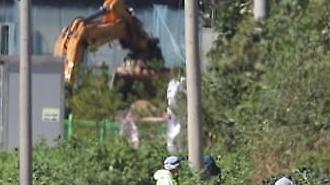 Dịch tả lợn Châu Phi bùng phát, Hàn Quốc tiêu hủy 10.000 con lợn và tiến hành quản lí chặt chẽ 6 khu vực lân cận.