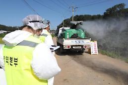 .韩加大非洲猪瘟疫点预防扑杀范围.