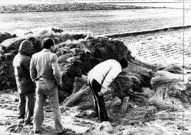 [화성연쇄살인사건 일지] 33년만에…1986년 9월 첫 살인부터 2019년 9월 이춘재 특정까지