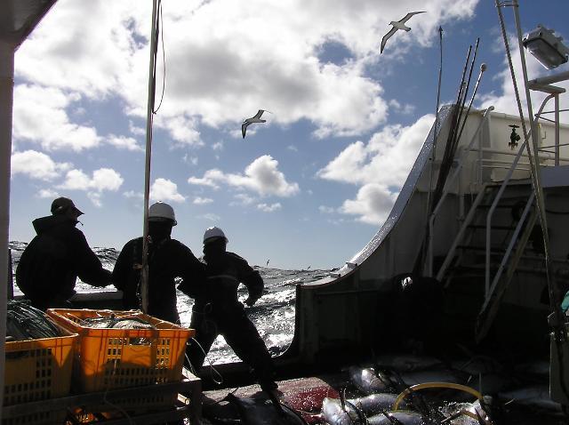 美, 한국 예비 불법 어업국 지정…2년간 개선 조치 판단