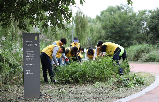 까사미아, 한강공원 '까사미아 숲' 가꾸기 임직원 봉사활동