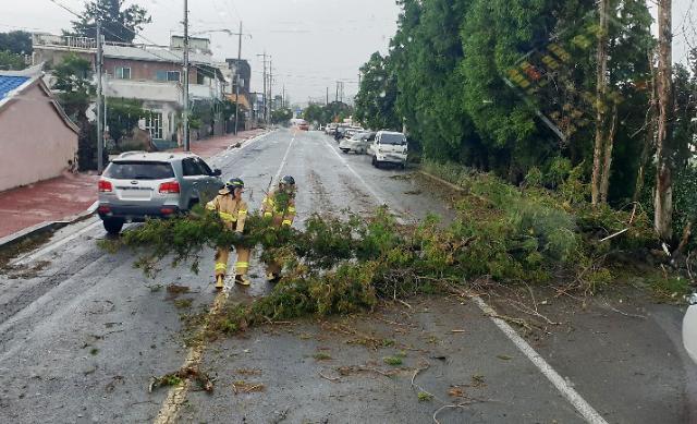 태풍 타파 피해 속출…부산서 사상자 3명 발생