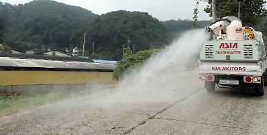 S. Korean spy agency reports outbreak of pig disease across N. Korea