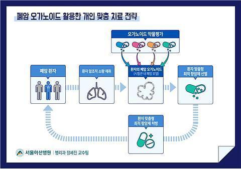 """서울아산병원 """"오가노이드 기술로 맞춤형 항암제 발굴 가능"""""""