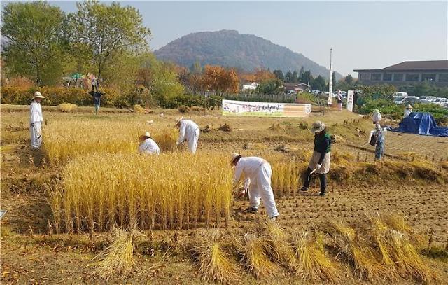시흥시,도시농부 행복만끽 가을걷이 체험마당 개최