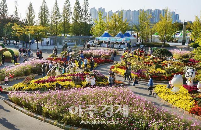 가을 낭만에 흠뻑, 고양가을꽃축제 12만명 다녀가