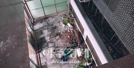 성남시, 시민안전 예방 야생멧돼지 포획활동 강화한다